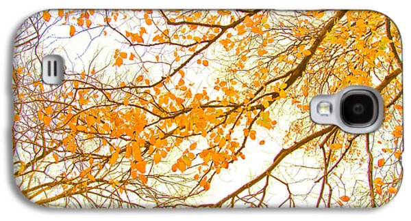 Featured Images Galaxy S4 Case - Autumn Leaves by Az Jackson