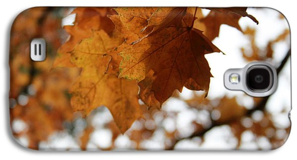 Autumn Leaves- By Linda Woods Galaxy S4 Case by Linda Woods