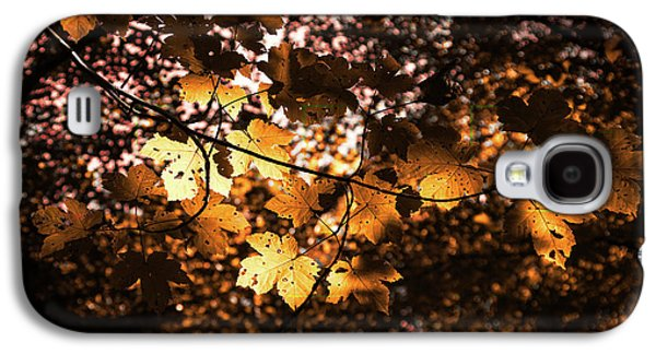 Autumn Leaves Galaxy S4 Case