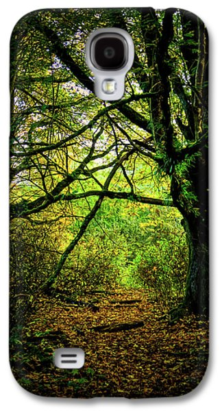 Galaxy S4 Case featuring the photograph Autumn Light by David Patterson