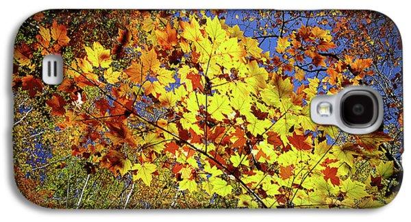 Autumn Light Galaxy S4 Case by Tatsuya Atarashi