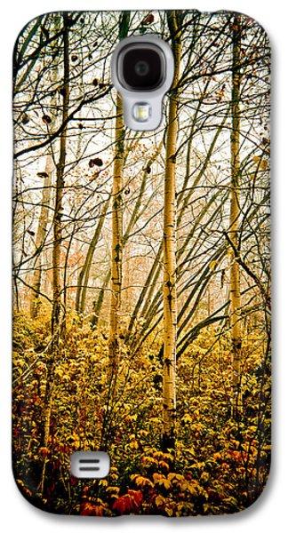 autumn Lines Galaxy S4 Case by Maggie Terlecki