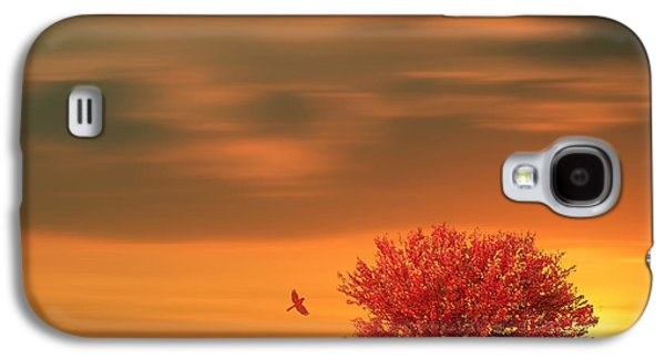 Lone Tree Galaxy S4 Cases - Autumn Galaxy S4 Case by Lourry Legarde