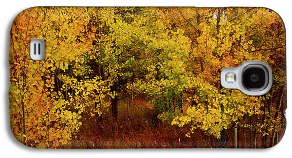 The Trees Mixed Media Galaxy S4 Cases - Autumn Palette Galaxy S4 Case by Carol Cavalaris