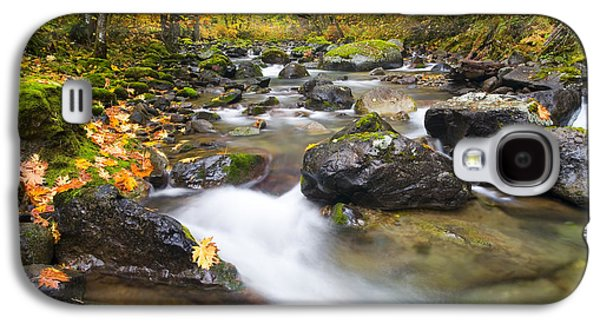 Autumn Passing Galaxy S4 Case by Mike  Dawson