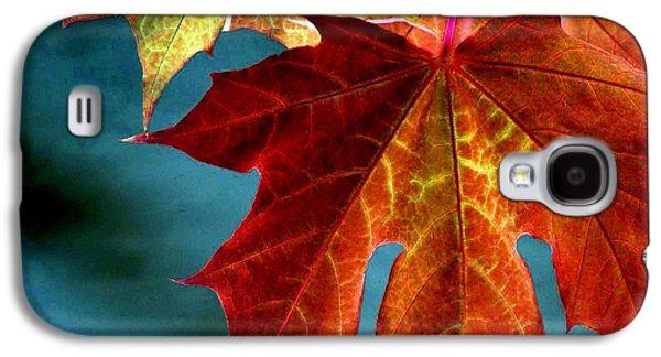 Autumn Regalia Galaxy S4 Case