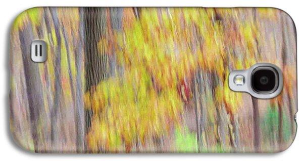 Autumn Splendor Galaxy S4 Case