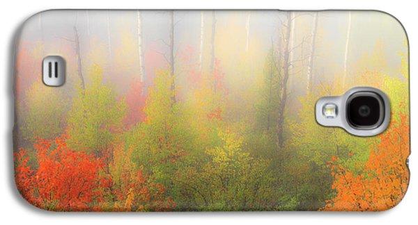 Autumn Stillness 2 Galaxy S4 Case by Leland D Howard