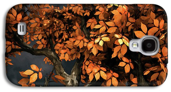Autumn Storm Galaxy S4 Case