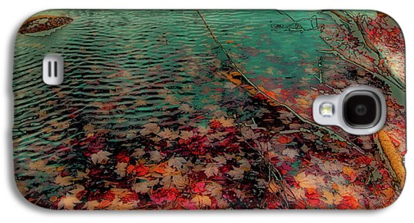 Galaxy S4 Case featuring the photograph Autumn Submerged by David Patterson