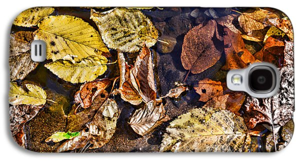 Autumn The Color Of Nature Galaxy S4 Case