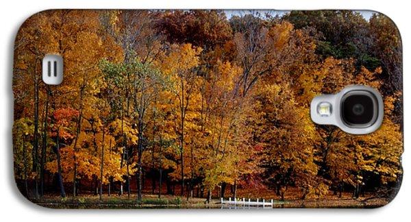 Autumn Trees Galaxy S4 Case by Sandy Keeton