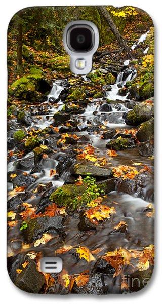 Autumn Tumbles Down Galaxy S4 Case by Mike  Dawson