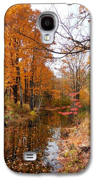 Autumn Vintage Landscape 2 Galaxy S4 Case
