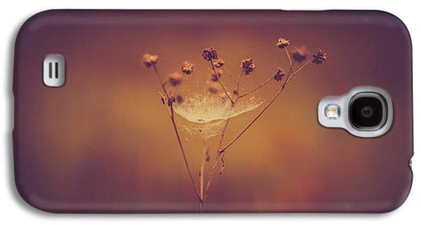 Autumn Web Galaxy S4 Case by Shane Holsclaw