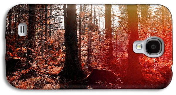 Autumnal Afternoon Galaxy S4 Case