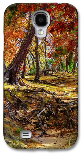 Autumn's Tangled Root Path Galaxy S4 Case by Stephanie Forrer-Harbridge