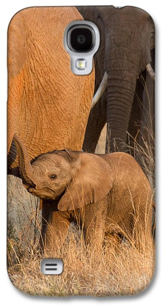 Baby Elephant 2 Galaxy S4 Case