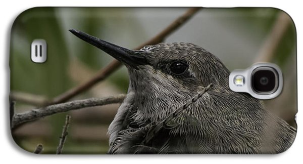 Baby Humming Bird Galaxy S4 Case
