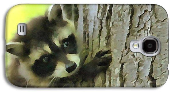 Baby Raccoon In A Tree Galaxy S4 Case