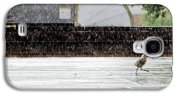Baby Seagull Running In The Rain Galaxy S4 Case