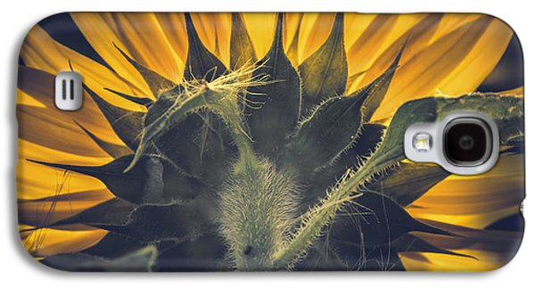 Back Lit And Back Facing Galaxy S4 Case