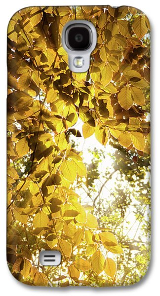 Backlit Leaves Galaxy S4 Case by Wim Lanclus