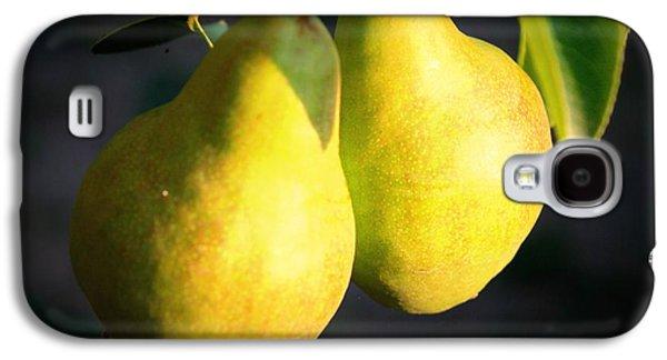 Backyard Garden Series - Two Pears Galaxy S4 Case by Carol Groenen
