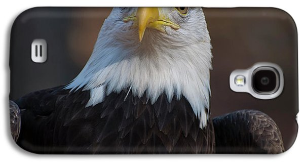Bald Eagle Looking Right Galaxy S4 Case