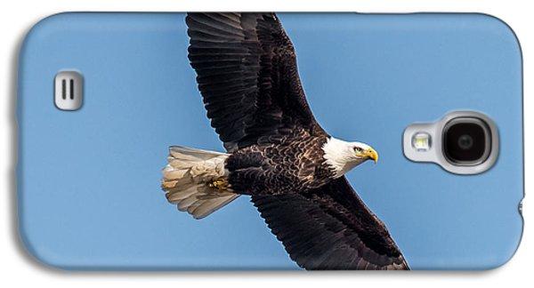 Bald Eagle Galaxy S4 Case by Paul Freidlund