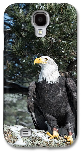 Bald Eagle Ready For Flight Galaxy S4 Case
