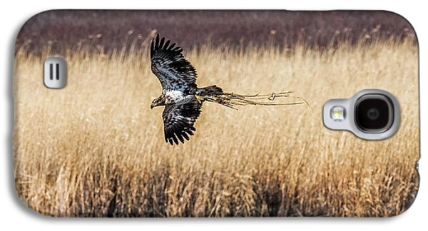 Bald Eagle With Nesting Material Galaxy S4 Case by Paul Freidlund