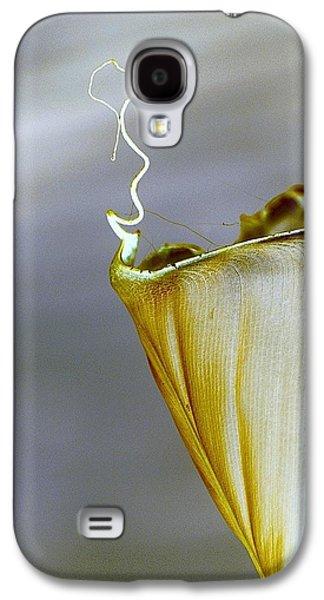Banana Leaf Galaxy S4 Case