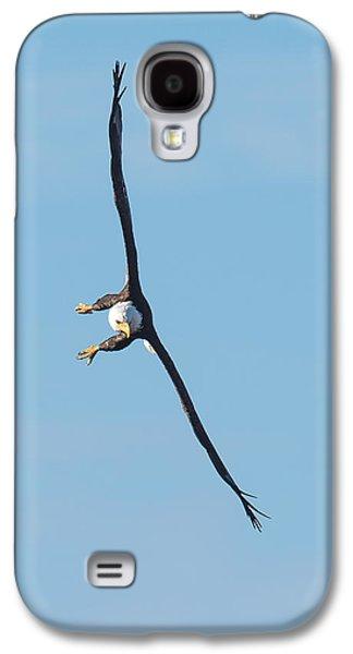 Banking Bald Eagle Galaxy S4 Case by Paul Freidlund