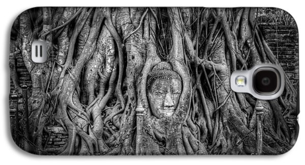 Banyan Tree Galaxy S4 Case by Adrian Evans