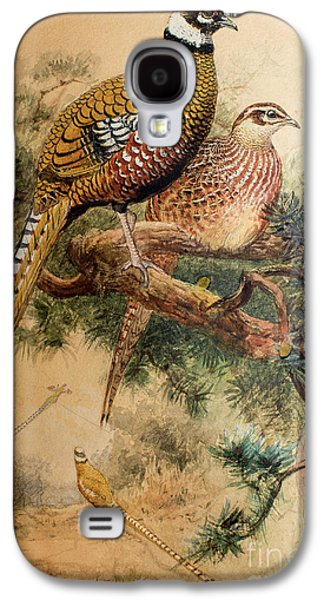 Bar-tailed Pheasant Galaxy S4 Case