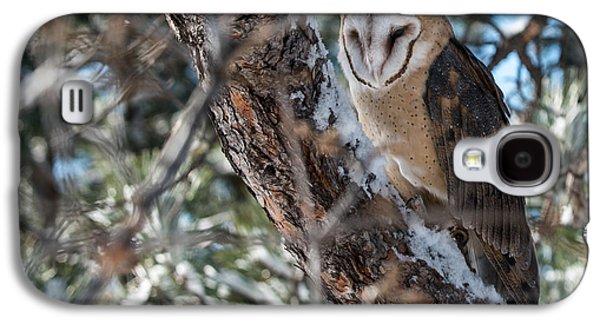 Barn Owl Galaxy S4 Case