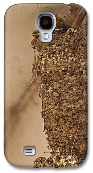 Barn Swallow Nest Galaxy S4 Case