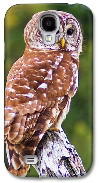 Barred Owl Galaxy S4 Case by Bill Barber