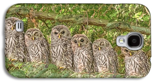 Barred Owlets Nursery Galaxy S4 Case