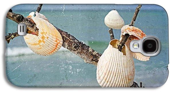 Beach Art - Seashell Shrine - Sharon Cummings Galaxy S4 Case by Sharon Cummings