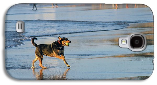 Beach Dog Playing Fetch Galaxy S4 Case by Bonnie Follett