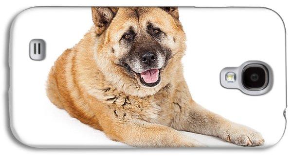 Beautiful Akita Dog Laying Galaxy S4 Case by Susan Schmitz