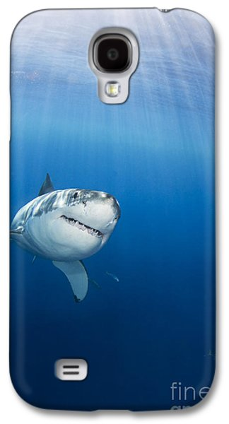 Sharks Galaxy S4 Case - Beautiful Great White by Dave Fleetham - Printscapes