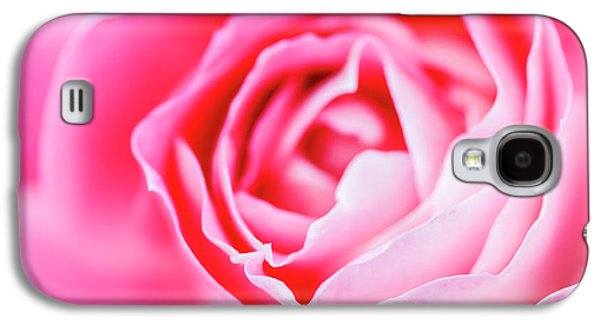 Beautiful Pink Rose Closeup Galaxy S4 Case