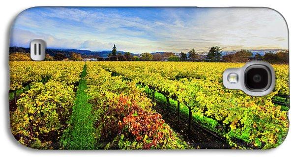 Beauty Over The Vineyard Galaxy S4 Case by Jon Neidert
