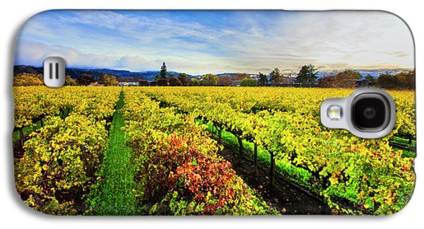 Beauty Over The Vineyard Galaxy S4 Case