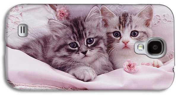 Bedtime Kitties Galaxy S4 Case