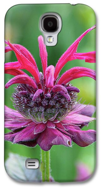 Bee Balm Galaxy S4 Case