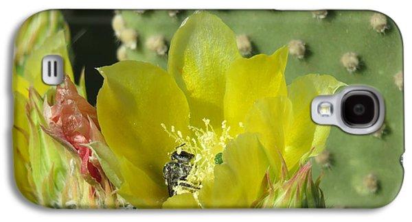 Bee-deep In Cactus Pollen Galaxy S4 Case by Feva Fotos